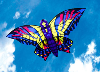 Swallowtail Butterfly Kite