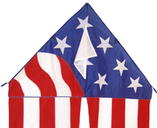 Patriotic Delta Kite with Long Flowing Tails